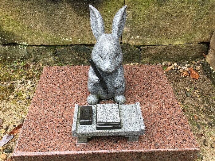 神楽殿裏の勉強ウサギ