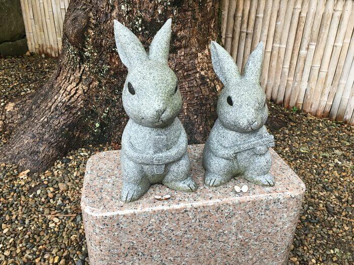 シジミが置かれたカップルウサギ