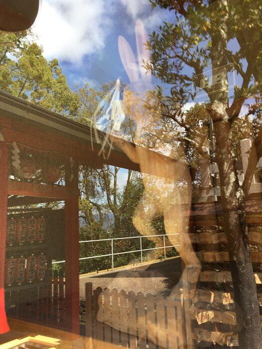 ウサギの木像(地主神社)