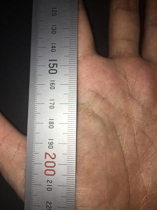 私の左手(離れ型)