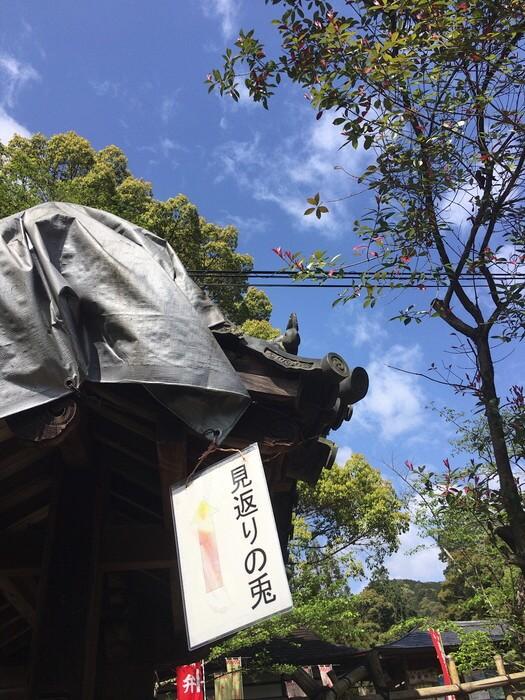 見返りの兎(三尾神社)